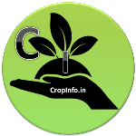CropINfo.in - Crop Information