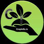 CropInfo.in - क्रॉप इनफार्मेशन